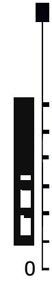 skala-poludniowa1